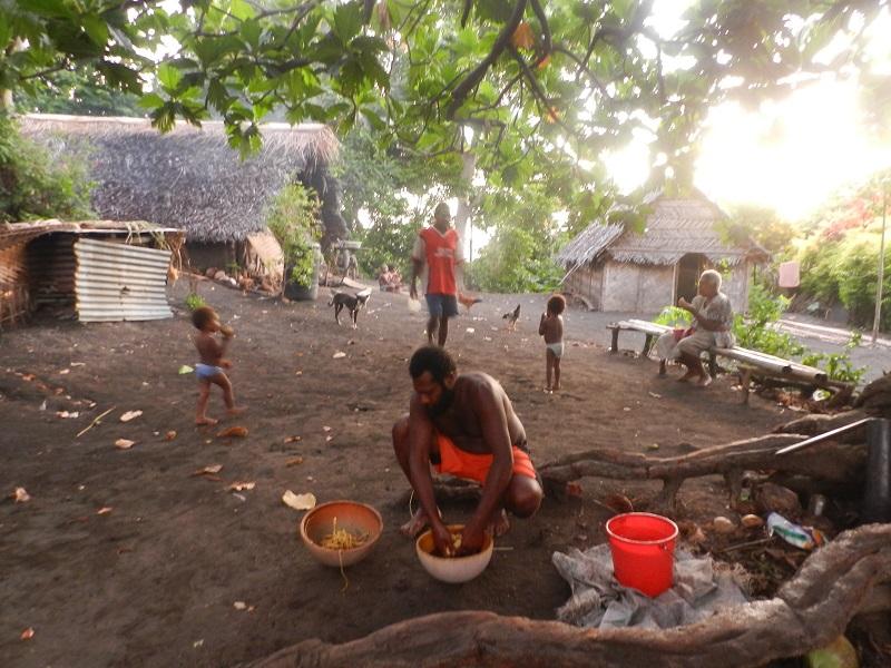 tribu, Varamsu, ile d'Anbrym, Vanuatu, préparation du kava...