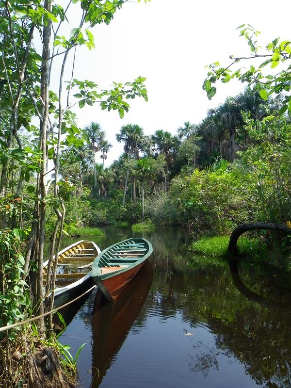 Puerto Maldonado, Amazonie, Perou
